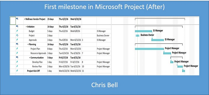 Project Status - Microsoft Project (After)