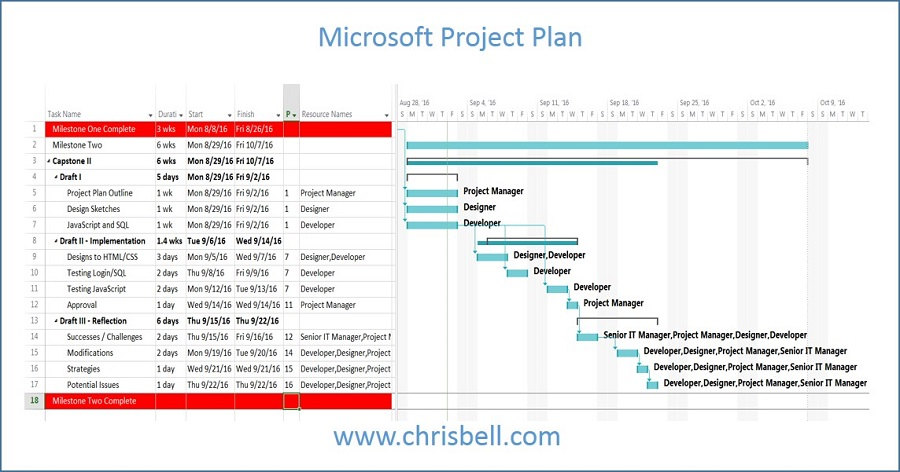 Microsoft Project Plan
